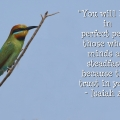 You will keep in perfectpeace